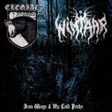 Elegiac / Wintaar - Iron Wings & My Cold Paths CD