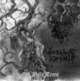 Arkha Sva / Woods of Infinity - Old Ugly Trees  EP