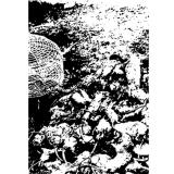 Rattenkönig – Conjuration of Hate MC/Tape